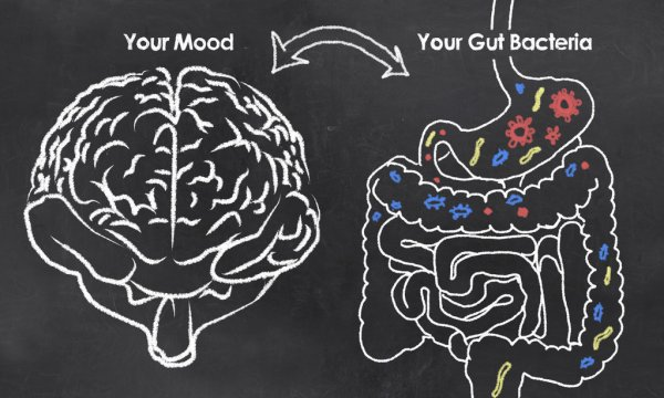 Five Ways To Get Your Gut In Check