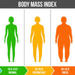 Understanding the Path to Healthier Body Composition